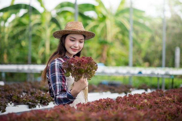 Улыбающаяся азиатская женщина изучает и исследует овощи на гидропонной ферме