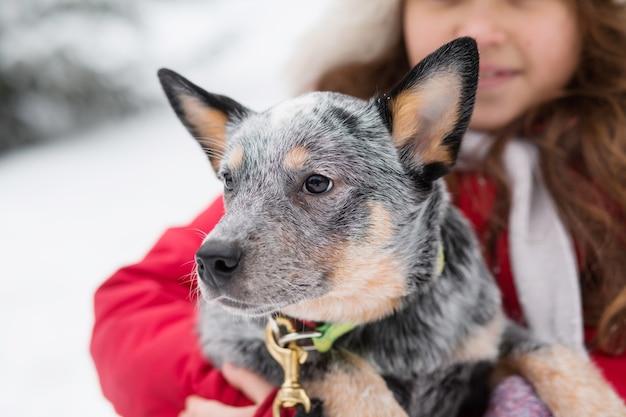 Улыбающаяся кавказская девушка в красной куртке обнимает голубого щенка целителя зимой. австралийская пастушья собака. фото высокого качества