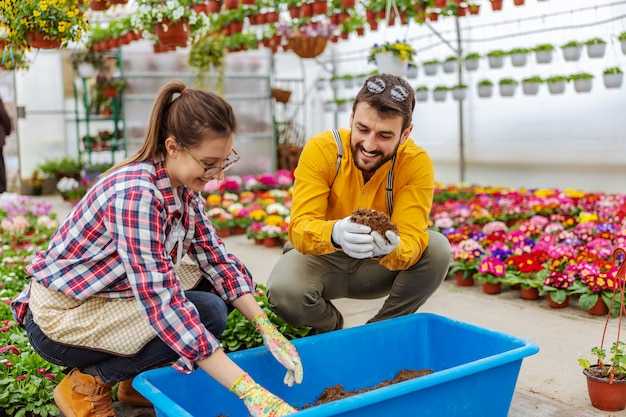 温室でしゃがみ、土壌と肥料を混ぜる笑顔のカップル。