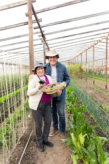 Smiling couple holding a basket with eggplants