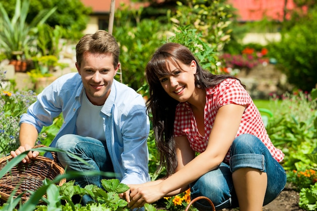 Smiling couple working in their vegetable garden