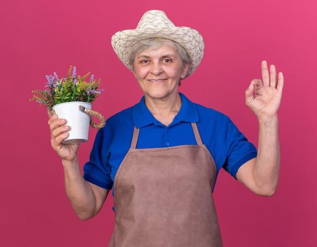 Sorridente giardiniere donna anziana che indossa cappello da giardinaggio tenendo vaso di fiori e gesticolando segno ok isolato sulla parete rosa con spazio copia