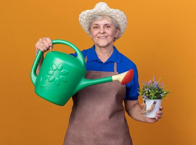 Sorridente giardiniere donna anziana che indossa un cappello da giardinaggio tiene annaffiatoio e vaso di fiori isolato su parete arancione con spazio copia