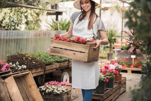 温室に赤いベゴニア花の木箱を持っている女性の庭師を笑顔