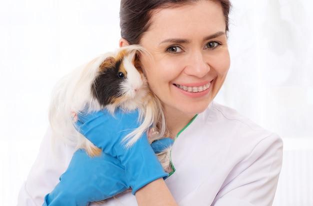 モルモットを保持している笑顔の女性獣医医師