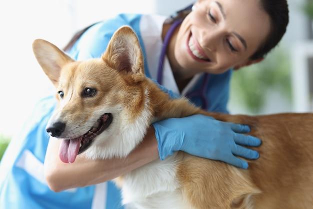 진료 약속 수의사 서비스에서 웃는 여성 수의사가 개를 쓰다듬어