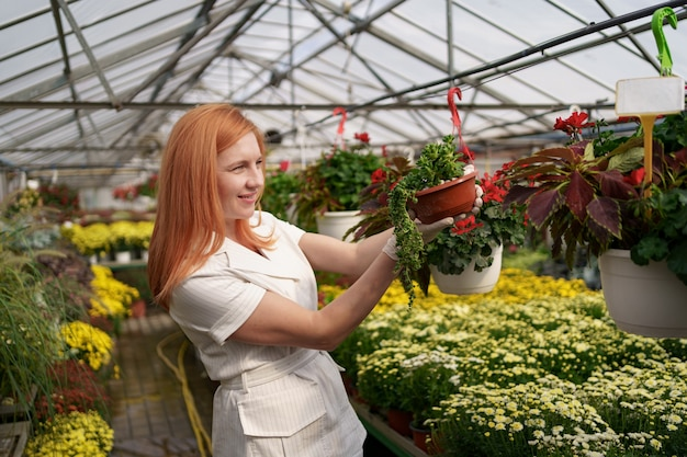 Fiorista sorridente nella sua stanza dei bambini che ispeziona i fiori in vaso mentre si prende cura delle piante da giardino nella serra