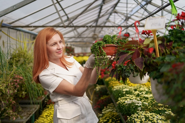 Улыбающийся флорист в своем питомнике осматривает цветы в горшках, ухаживая за садовыми растениями в теплице