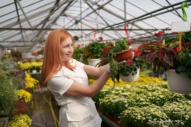 彼女は温室の庭の植物に傾向があるように鉢植えの花を検査している彼女の保育園で笑顔の花屋