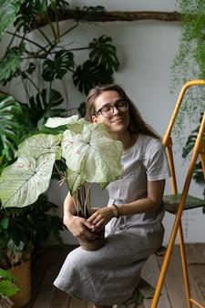 Улыбающаяся девушка-флорист держит и обнимает комнатное растение каладиум в цветочном магазине, сидя на стремянке