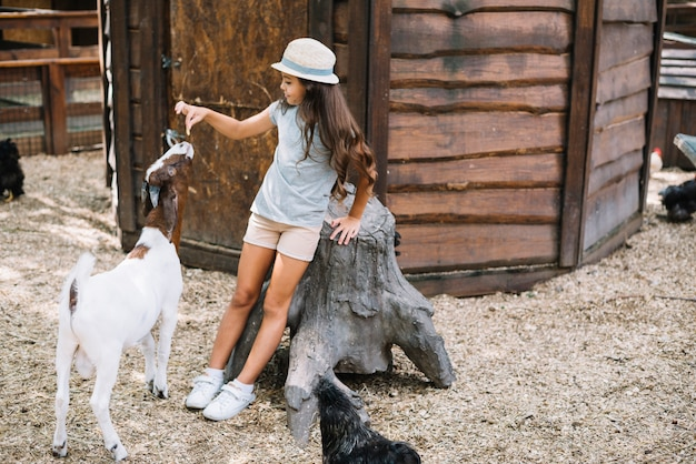 Smiling girl leaning on tree trunk feeding to goat in the barn
