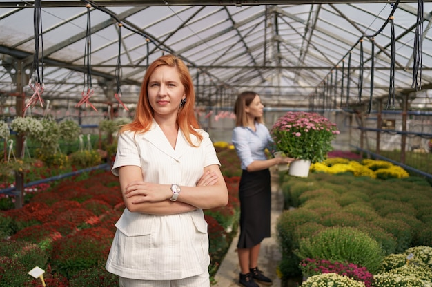 たくさんの花を持っている腕を組んでポーズをとっている温室の所有者とガラスの屋根の下にピンクの菊のポットを持っている同僚の笑顔