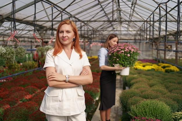 Sorridente proprietario della serra in posa con le braccia piegate avente molti fiori e un collega che tiene una pentola con crisantemi rosa sotto il tetto di vetro