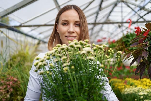 Sorridendo felice fioraio nel suo vivaio in piedi tenendo i crisantemi in vaso nelle sue mani mentre tende alle piante da giardino in serra