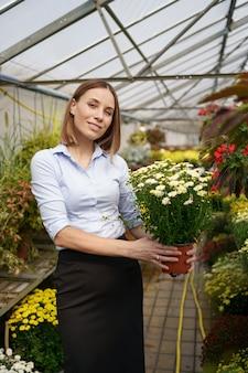 彼女は温室の園芸植物に傾向があるように彼女の手で鉢植えの菊を持って立っている彼女の保育園で幸せな花屋を笑顔