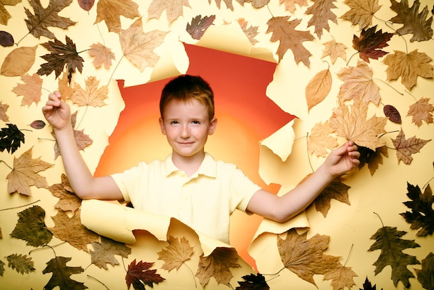 Smiling little boy wearing in fashionable seasonal clothes having autumnal mood. the biggest discounts for all autumn clothes for children. autumn concept. cute boy are preparing for autumn sunny day.