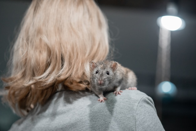 Smiling little girl holding two home decorative rats in her arms