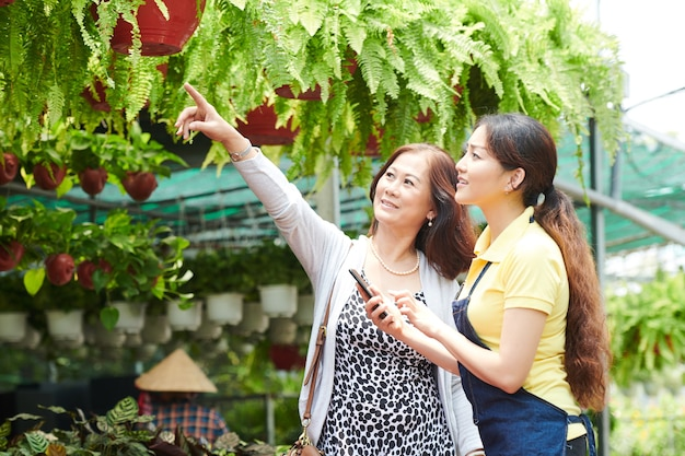 Smiling mature woman asking gardening center worker to give her fern in hanging pot