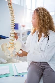 脊椎モデルを保持している理学療法士の笑顔