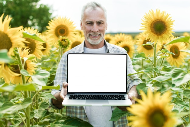 Smiling senior man standing in a sunflower field holding open laptop. mockup