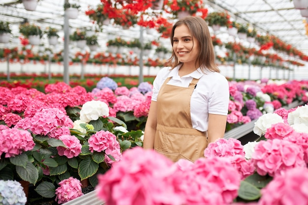 Smiling woman in apron taking care of hydrangea