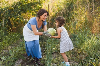 Smiling woman giving harvested cabbage to her daughter in the field