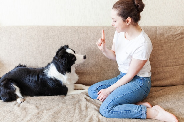 Smiling young attractive woman playing with cute border collie on couch at home indoors