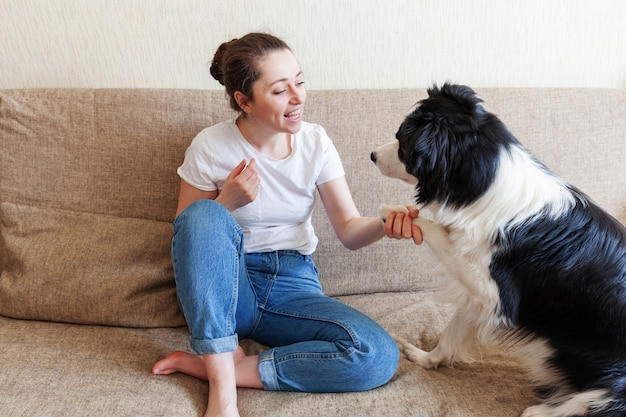 Smiling young attractive woman playing with cute puppy dog border collie on couch at home indoors