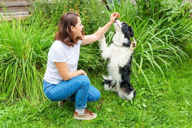 여름 정원이 나 도시 공원에서 귀여운 강아지 개 보더 콜 리를 놀고 웃는 젊은 매력적인 여자. 개 친구와 여자 훈련 트릭입니다. 애완 동물 관리 및 동물 개념.