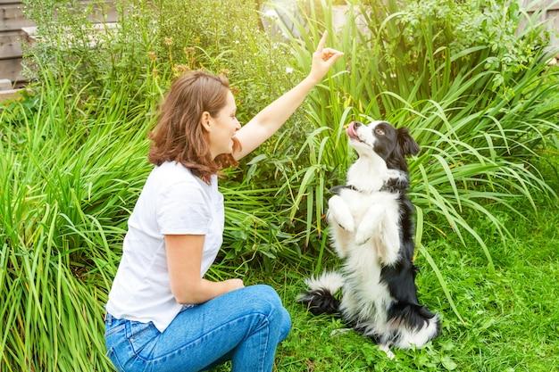 여름 정원 또는 도시 공원 야외에서 귀여운 강아지 강아지 보더 콜 리와 함께 연주 젊은 매력적인 여자를 웃 고. 개 친구와 여자 훈련 트릭입니다. 애완 동물 관리 및 동물 개념.