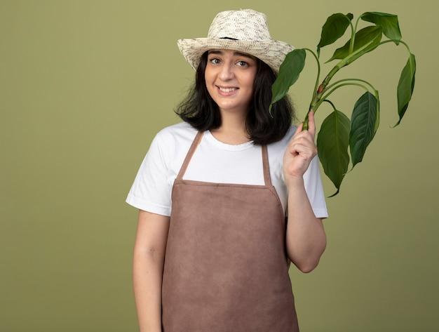 園芸帽子を身に着けている制服を着た若いブルネットの女性の庭師の笑顔は、オリーブグリーンの壁に隔離された植物を保持します
