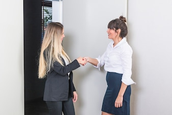 Smiling young businesswoman shaking each other's had