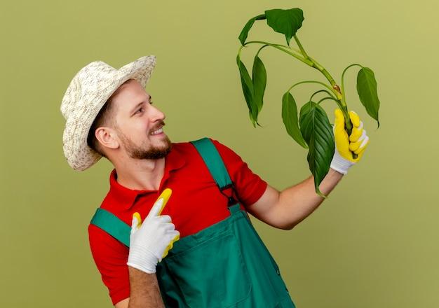 制服を着た若いハンサムなスラブの庭師とオリーブグリーンの壁に隔離された植物を見て、指している庭師の手袋を着用して帽子をかぶって笑っている