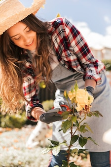 Smiling young woman wearing hat cutting the yellow rose flower with secateurs