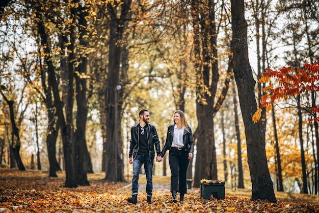 秋の公園で屋外を歩く幸せな愛情のあるカップルの肖像画。男と女の手を繋いでいるとsmilling