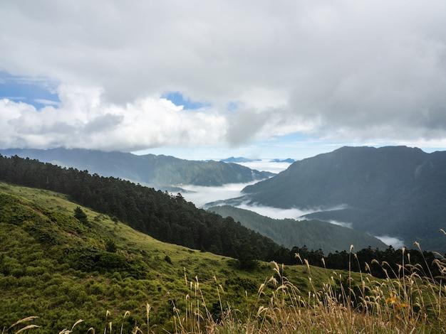 風景や美しい山々の煙と霧
