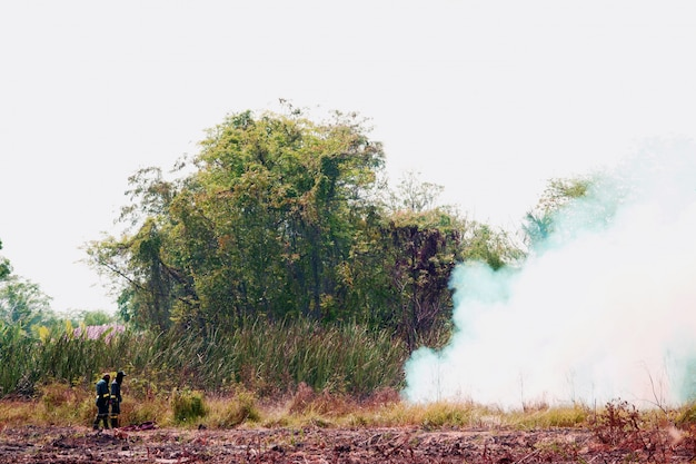Smoke field and fireman burning wildfire