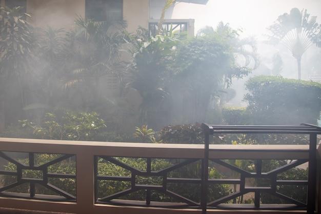 家の間の熱帯の町の通りのヤシの木の枝の煙の霧