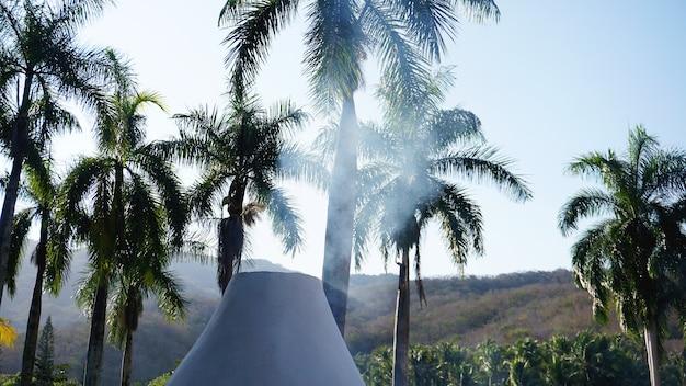 야자수 사이 오두막에서 연기 - 여름