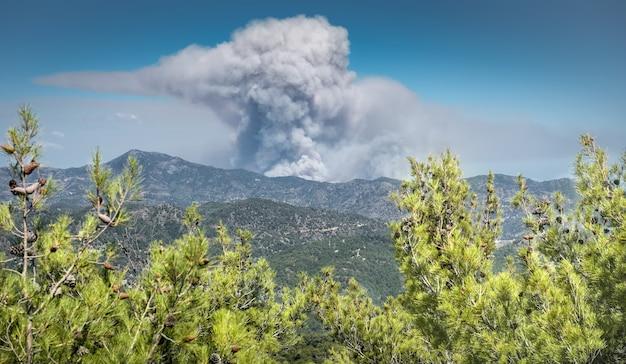 더운 계절에 먼 산불에서 troodos 산 키프로스의 연기