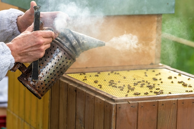 밀랍과 꿀을 다룰 때 훈제된 벌집
