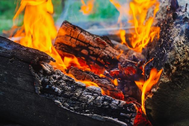 くすぶった丸太が鮮やかな火で燃え尽きます。キャンプファイヤーの大気のオレンジ色の炎。コピースペースで内側からbonき火の想像を絶する詳細な画像。空気中の煙と輝く残り火。