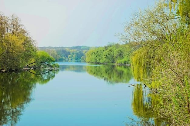 Ровная гладь реки, на берегу деревья со светло-зелеными листьями, небо без облаков весна