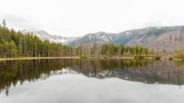 Смречинский пруд, татранский национальный парк, польша. горное озеро в лесу