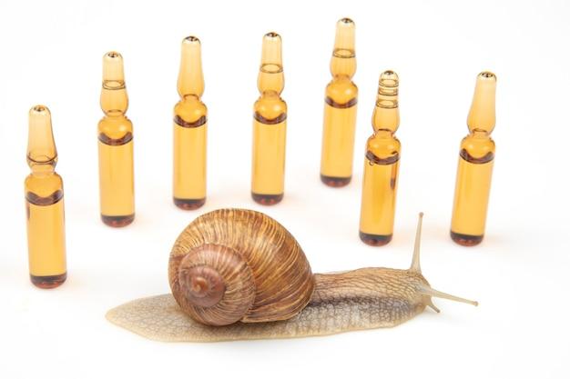 Улитка и медицинские ампулы для инъекций. моллюски и беспозвоночные