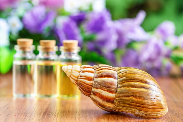 Snail and bottle oil