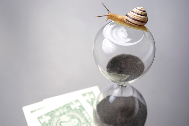 Snail crawls on an hourglass against the background of money. speed and stability in increasing income. time for work and rest. financial business success. time investment target