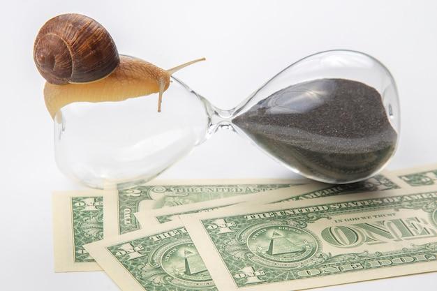 カタツムリはお金の表面に対して砂時計を這う。収入の増加におけるスピードと安定性。