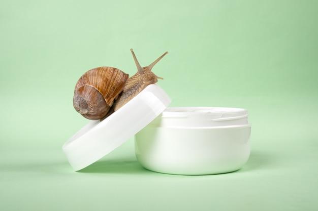달팽이 점액 크림, 뷰티 스킨 케어.