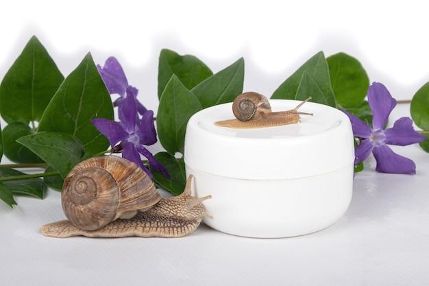 달팽이 점액 크림, 피부 관리용 화장품.